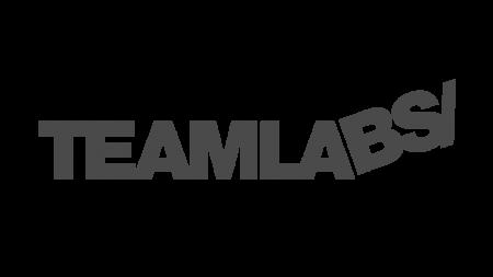 TeamLabssss